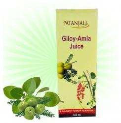 Patanjali Giloy-Amla Juice-500 ml