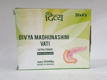 Divya Madhunashini Vati 120 tab